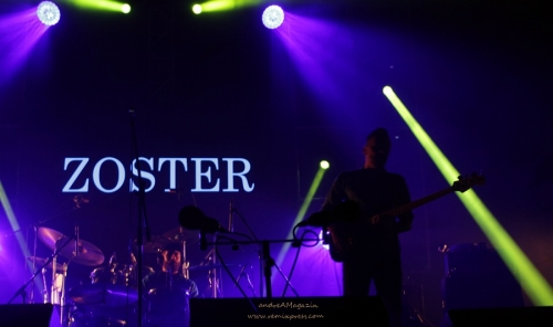 Zoster1 (1)